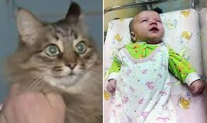 مهربان ترین گربه دنیا