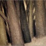 کامل ترین البوم نقاشی از سهراب سپهری