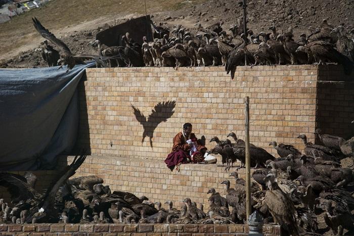 سرزمین تبت