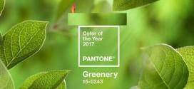 رنگ سال ۲۰۱۷ اعلام شد