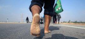 تصاویری از پیاده روی اربعین ۹۶
