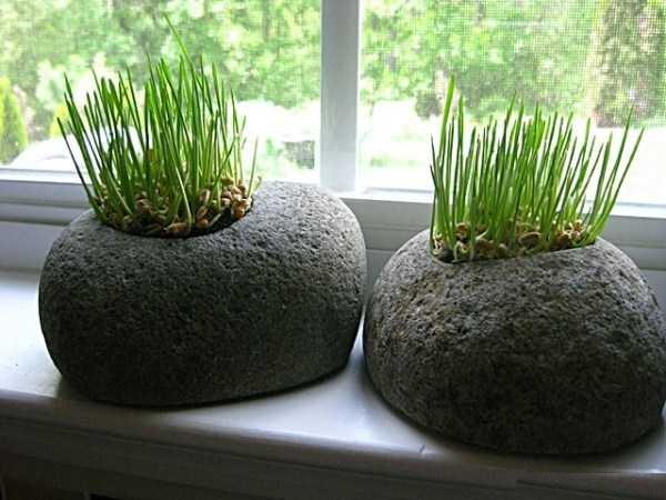ایده های جدید برای تزیین سبزه ی سفره هفت سین