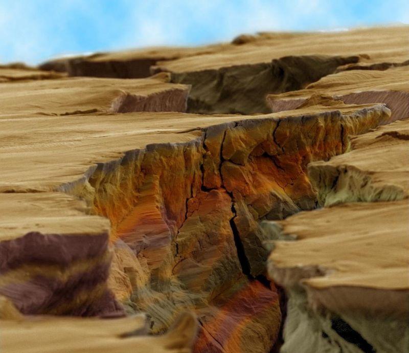 عکس ها میکروسکوپی از دنیای اطراف